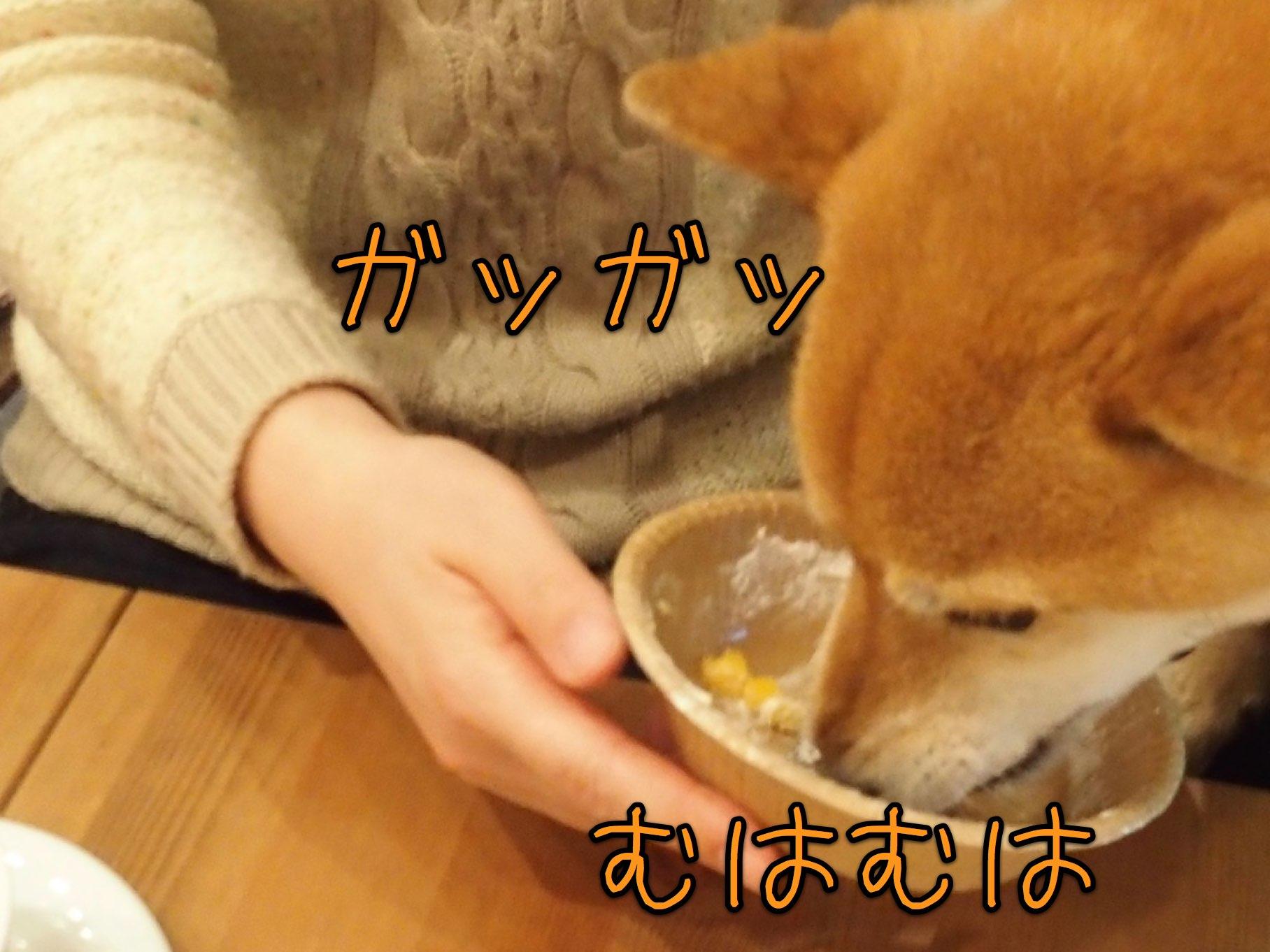 4月生まれの誕生会 〜ご紹介編〜